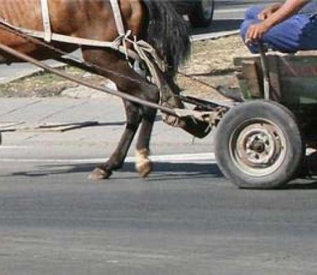 Жена блъсна каруцар край П. Тръмбеш